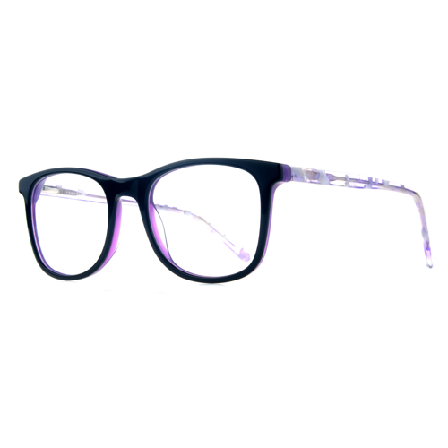 Delley Full Rim Wayfarer 11669