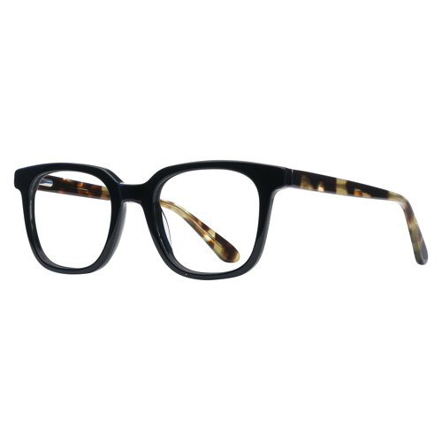 Saillon Full Rim Wayfarer 12235